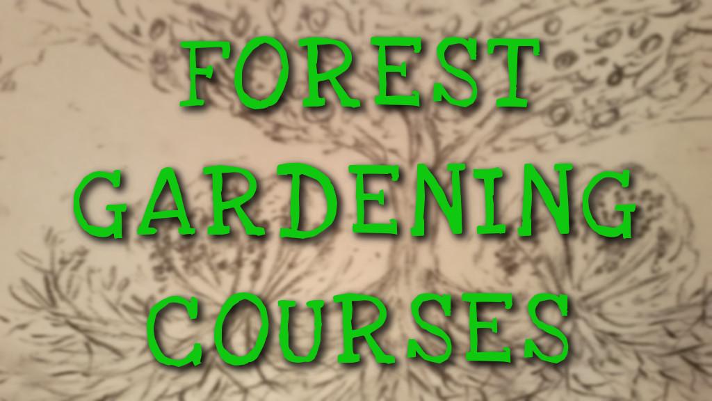 forest gardening text