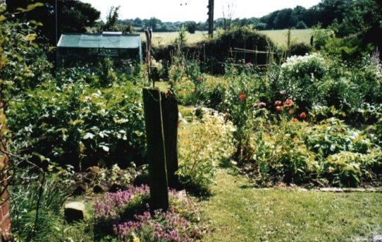 veggarden1