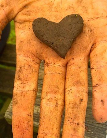 soil-heart