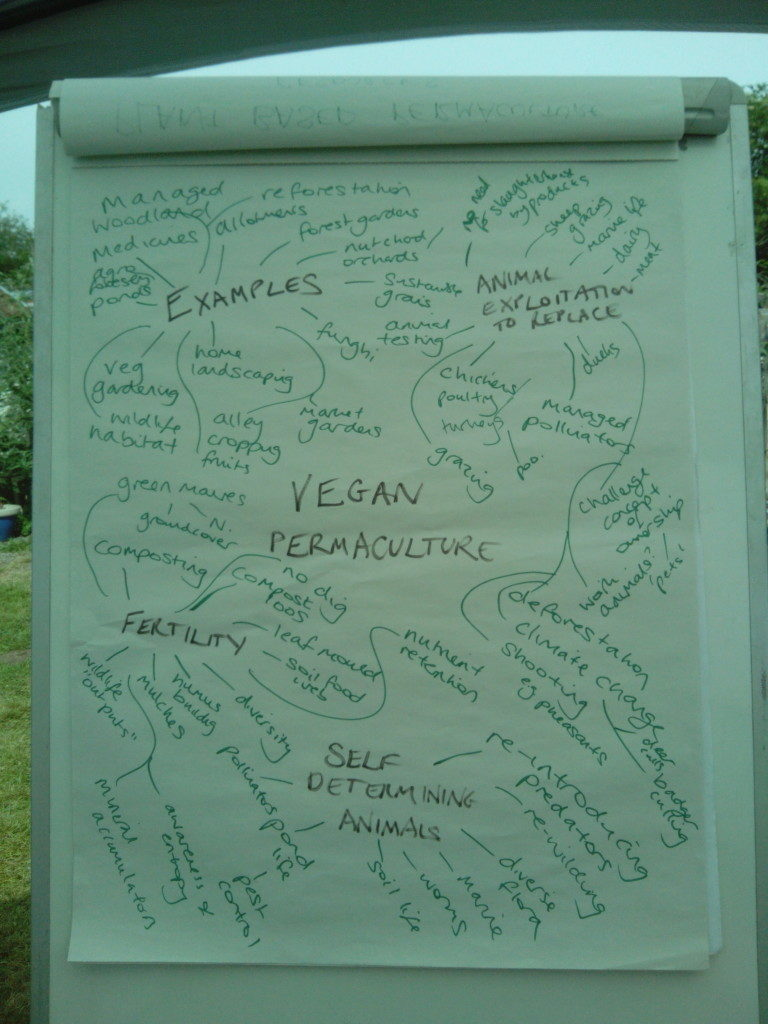 vegan-pdc-mindmap-768x1024