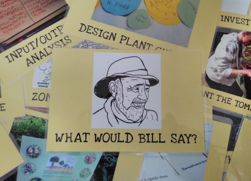bill-card