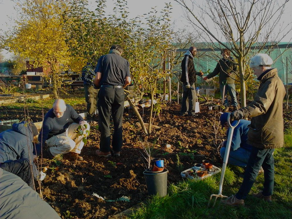 Forest Farm Peace Garden is looking for new buddy volunteers ...